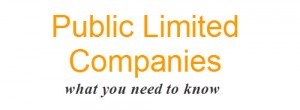 public-limited-company-advangates-and-disadvantages